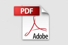 PDF-Dateien mit gFM-Business free und Light
