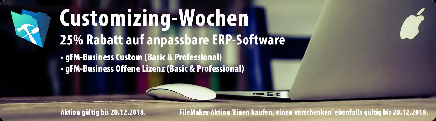 Aktion: 25% Rabatt auf anpassbare ERP-Software