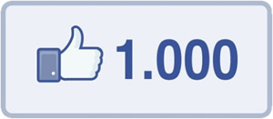 goFileMaker mit 1000 Facebook-Fans