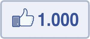 goFileMaker mit 1000 Facebook-Fans