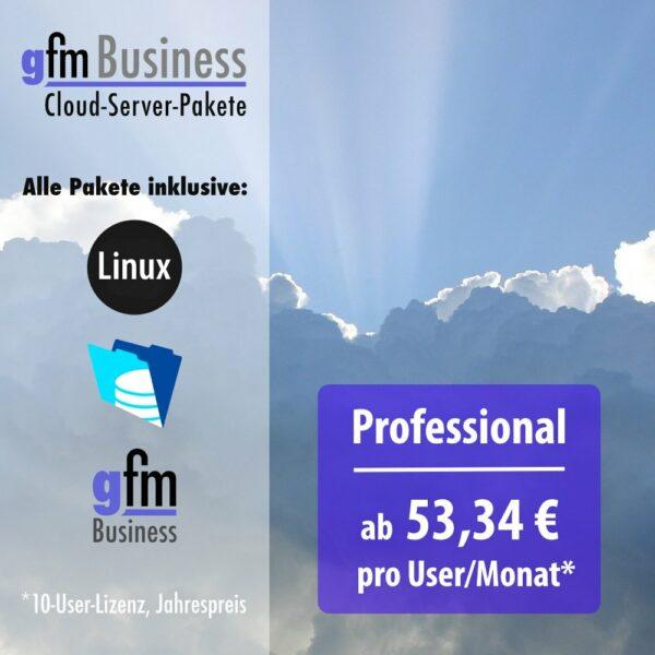 gFM-Business ERP-Software Cloud-Server-Paket